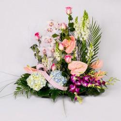 Corazón de paniculata y orquídeas
