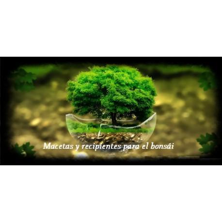 Macetas y recipientes para el bonsái